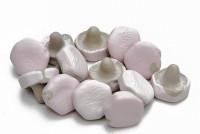 Veilchen-Lakritz Pilze